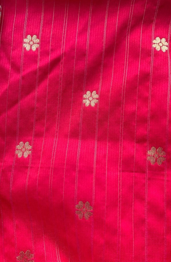 pinkpaithani1